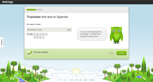 translate-text-i-n-duolingo